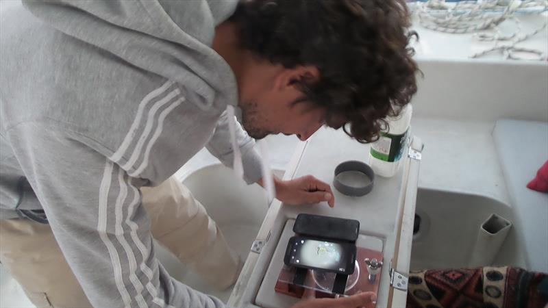 Using the low tech microscope on deck  - photo © Mission Ocean