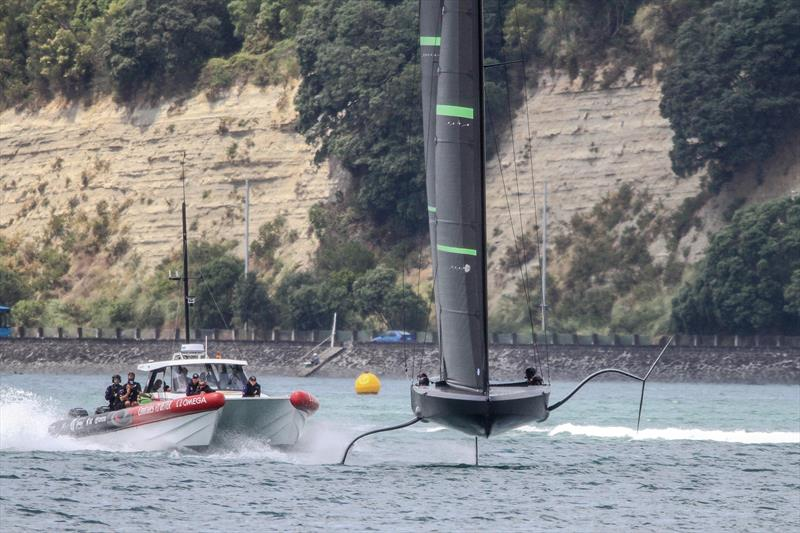 Intent looks from a packed chase boat indicate that Te Kahu is more than just a training boat for Emirates Team New Zealand - Waitemata Harbour - January 29, 2020 - photo © Richard Gladwell / Sail-World.com
