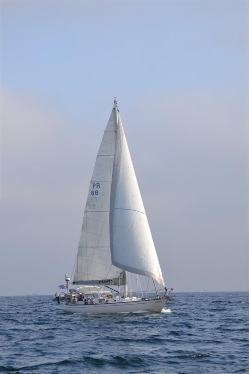 Taipan under sail from Ile Houat to Ile d'Yeu - photo © SV Red Roo