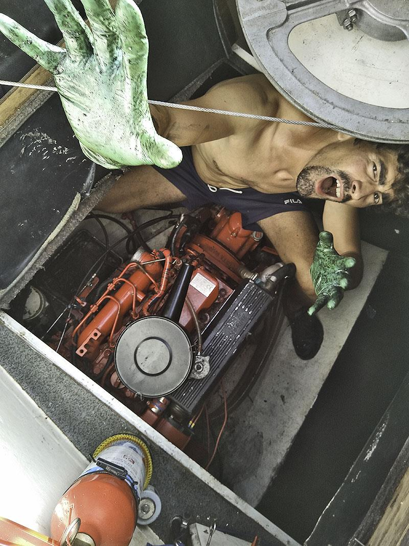 Henrique (monster from the deep) in the engine compartment - photo © Mission Océan