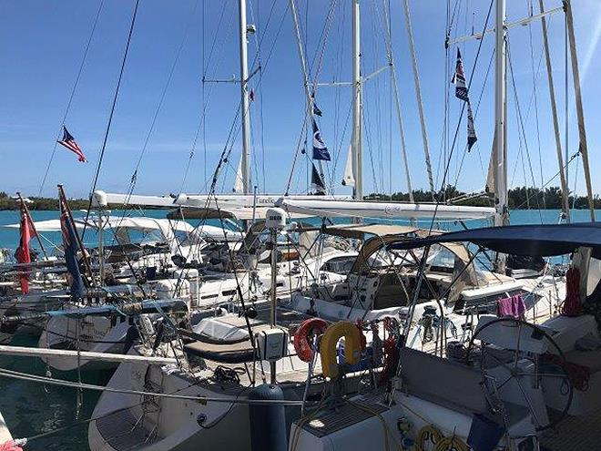 ARC Europe & ARC USA arrivals in Bermuda photo copyright World Cruising taken at  and featuring the Cruising Yacht class