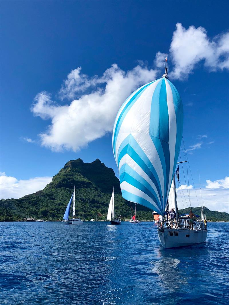 Word ARC 2019-20 - Start - ResoluteII Tintin photo copyright World Cruising taken at  and featuring the Cruising Yacht class