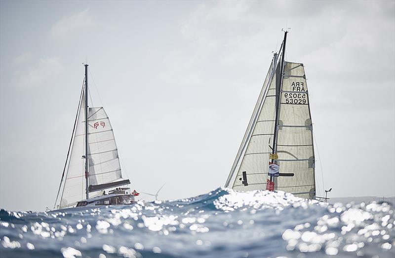 ARC  Rally - Big swell in the start area - photo © World Cruising Club / James Mitchell