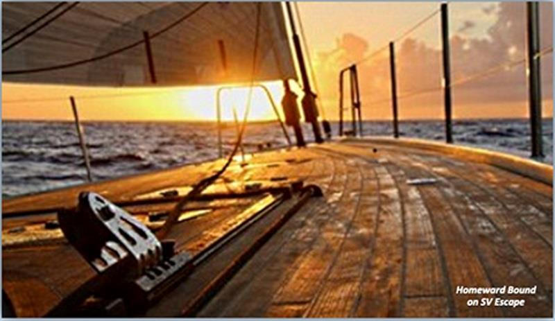 Salty Dawg Sailing Association helps hundreds of sailors leaving the Caribbean to head north - photo © Salty Dawg Sailing Association