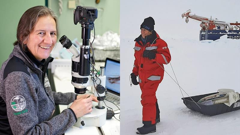 Carin Ashjian (left) at work studying Arctic Ocean zooplankton in her lab space on the German icebreaker Polarstern and commuting to work (right) at the `Ocean CIty` ice camp near the ship. - photo © Michael Gutsche, Alfred Wegener Institute / Serdar Sakinan, WHOI