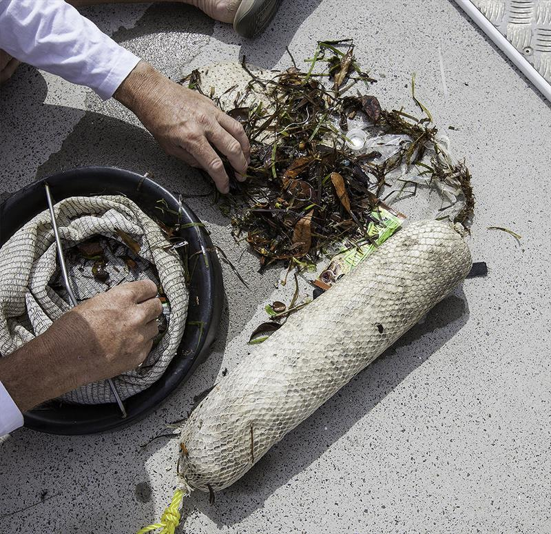 Investigating the 'catch' - leaves, wrappers, cable ties, cigarette butts and polystyrene balls. - photo © John Curnow