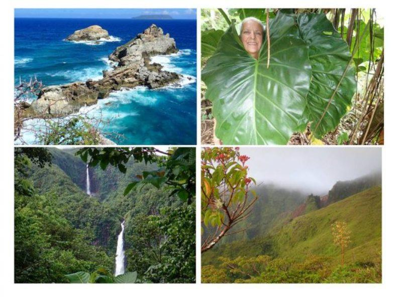 The hiking in these islands is fabulous with incredible vistas, lush rain forest and waterfalls - photo © Rod Morris