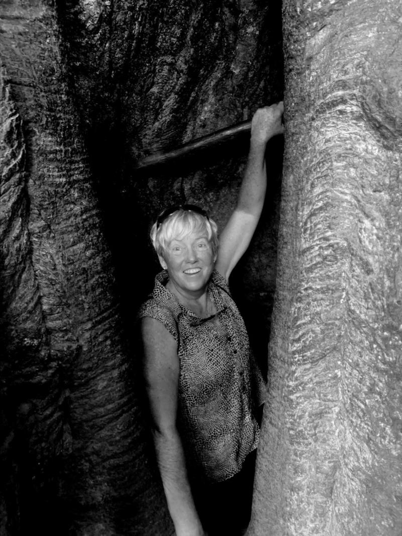 Underground into the roots of the Ficus - photo © SV Taipan