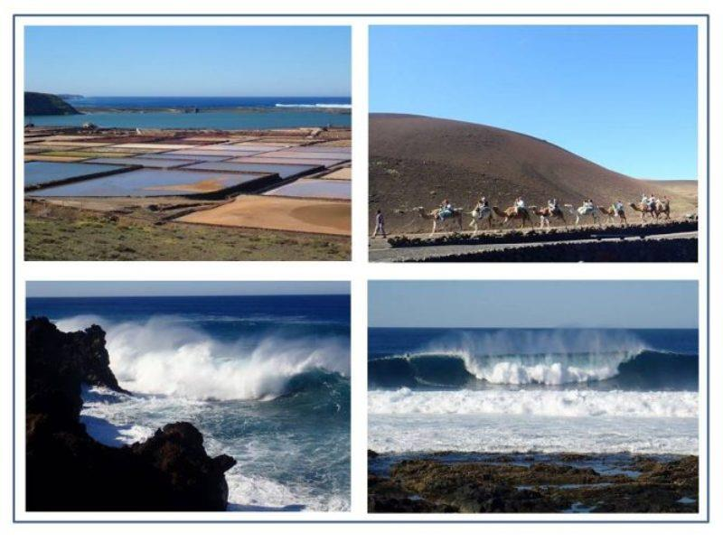 Salinas Janubio salt flats on SW side of Lanzarote. Camels were used extensively in agriculture on Lanzarote and are now an opportunity for tourists to interact with amazing animals and experience a camel ride. Surfers get exhilarating ride on big waves. - photo © Rod Morris