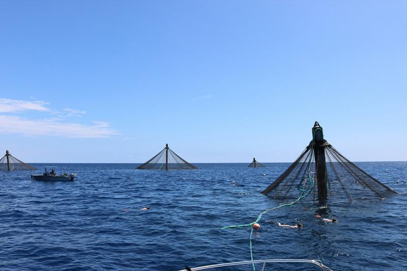 Blue Ocean Mariculture net pens - photo © NOAA Fisheries/Cynthia Sandoval