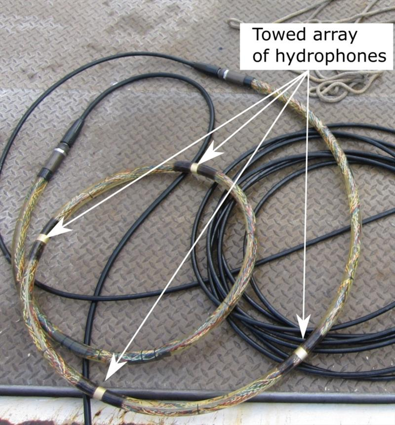 Towed array of hydrophones, or underwater microphones, used to collect acoustic data of false killer whales. The hydrophones are housed inside a plastic tube filled with oil and connected to computers on research ship using 300 meters of underwater cable. photo copyright NOAA Fisheries taken at